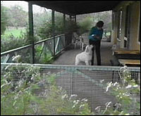 Fenced in verandah