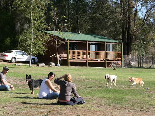 Bluegum Pet Friendly Cottage