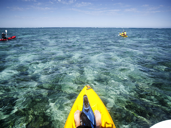 Kayaking Ningaloo Reef
