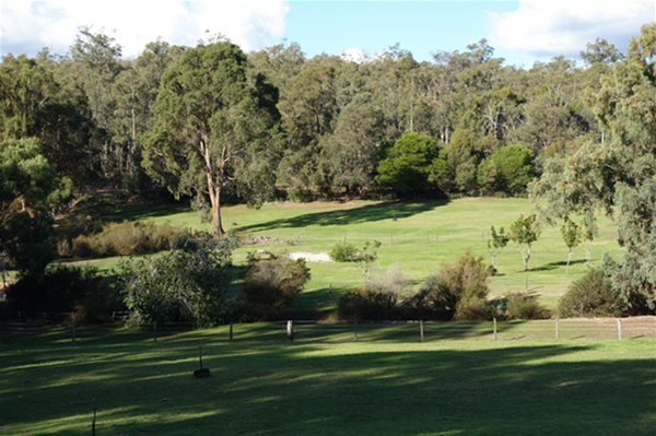 View across the paddocks to the tracks and trails