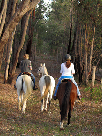 Horse riding in the hills