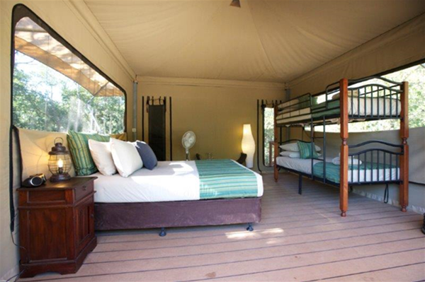 View of Family Safari Tent
