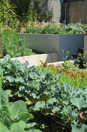 Organic vegetable and herb gardens can be incorporated in any design