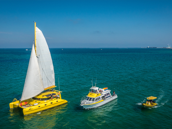 Perth Fremantle Sail Cruise Eco Tours