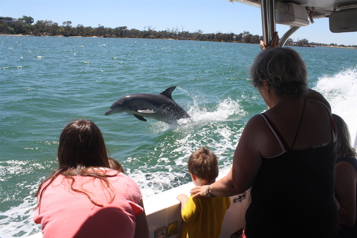 Dolphin & Scenic Canal Cruises