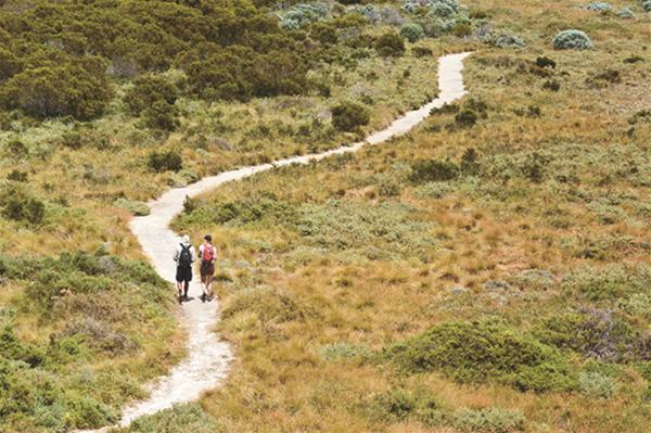 Wadjemup Walk Trail
