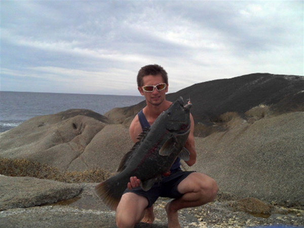 "One of members with a huge southern Blue Groper ""off the stones"""