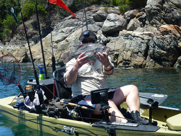 "A Kayak ""fully pimped for fishing"" reaps the rewards of a prized West Australian Dhufish!"