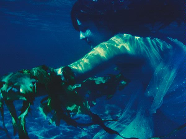 Paola Talbert, Spirit In Verde I, photograph, 60 x 80cm
