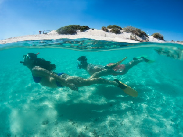 Snorkelling is world class within the Ningaloo World Heritage Area. Book a coral snorkel tour or simply swim straight off the beach!