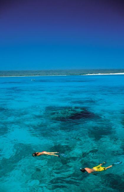 Snorkelling at Ningaloo