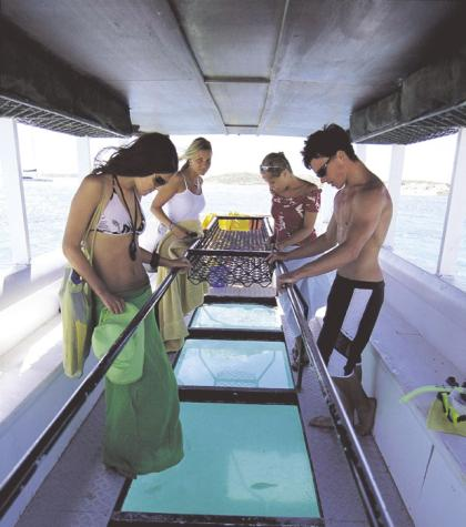 Coral Bay Glass Bottom Boat Tours