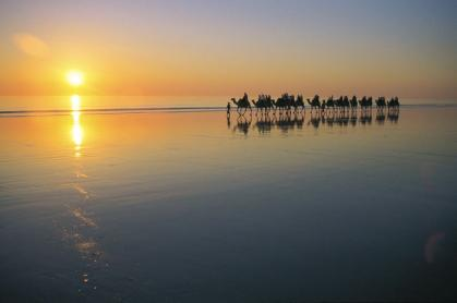 Broome Camel Tours