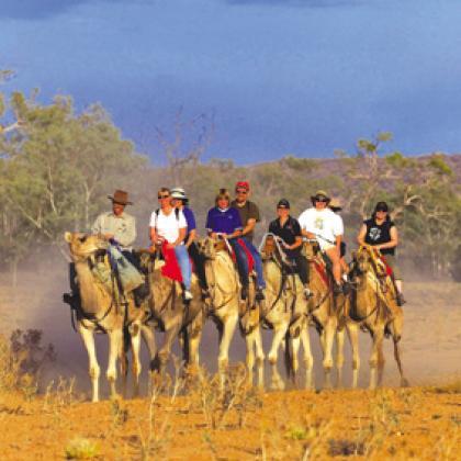 Frontier Camel Farm