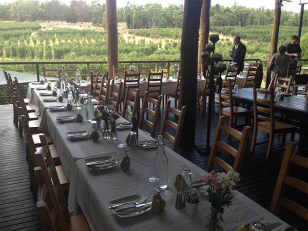 Morning wedding on the Cider House deck