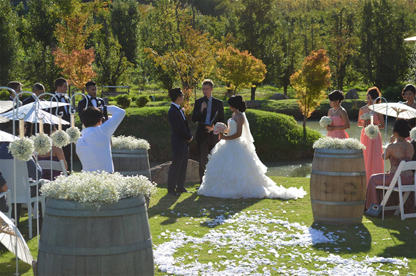 Ceremony at the Dragonfly Ponds