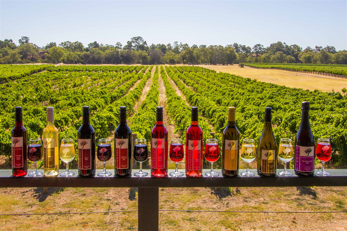Our wine range includes whites, reds, roses, fortified and sparkling wines, all from our estate grown grapes