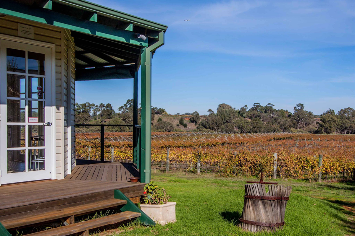 Visitors are encouraged to have a stroll in the vineyard and see the grapes in their various stages of development, and can walk down to view the Swan River.
