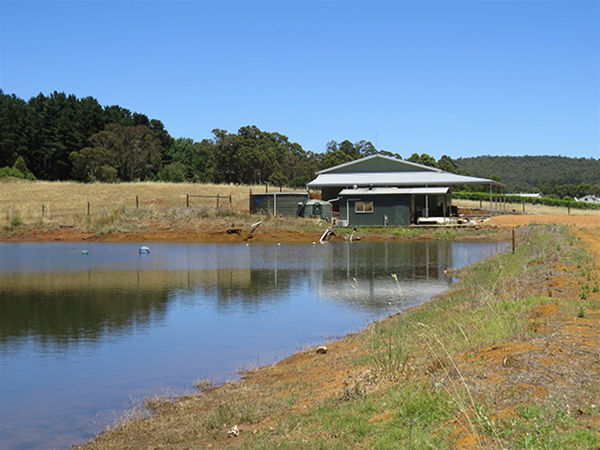 Pump Shed (foreground) and Winery