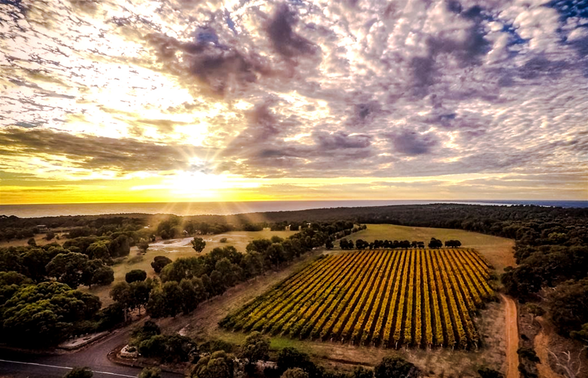 Aerial view of the Wise Vineyard property, overlooking Geographe bay at sunrise.